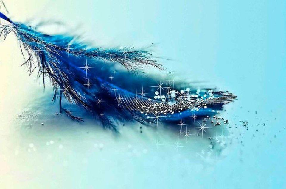 awesome colored feathers wallpaper - photo #29